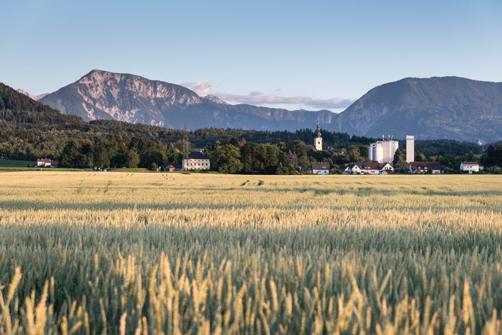 Landschaftsfoto: Das Bild zeigt ein fast erntereifes Feld mit einer Kirche einem Wald und Bergen im Hintergrund